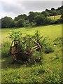 SX8156 : Agricultural equipment, Tuckenhay by Derek Harper
