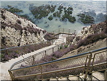 TQ4100 : Bastion steps at Peacehaven cliffs by Dave Spicer