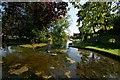 TF1134 : Spring Wells, Billingborough by Dave Hitchborne