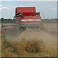 TA0619 : Combining Oilseed Rape near Robinsons Hollow Farm by David Wright