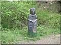 SO7476 : The sightless eyes and the deaf ears-Wyre Forest, Worcs by Martin Richard Phelan