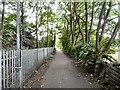 SJ8890 : Trans Pennine Trail by Gerald England