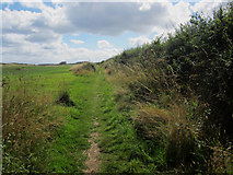 NU2422 : Public footpath alongside  the course of Dunstanburgh Castle Golf Club by Graham Robson