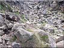 SK1087 : Grinds Brook Footpath by Stephen Burton
