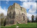 NT9239 : Etal castle keep by Stephen Craven