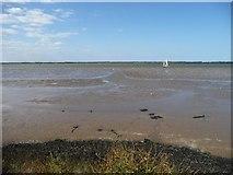 TG4907 : Site of mapped causeway, Breydon South Flats by Christine Johnstone