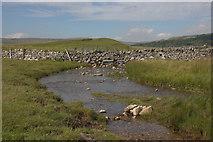 SD8965 : Stream below Malham Tarn by Mark Anderson