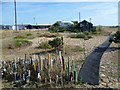 TR0816 : Entrance to an artist's studio at Dungeness by Marathon