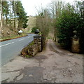 SO4620 : Entrance drive to The Sandhouse east of Skenfrith by Jaggery