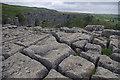 SD8964 : Limestone pavement, Malham Cove by Ian Taylor