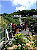 SC4384 : The Bee at Laxey Mines Railway station by Richard Hoare