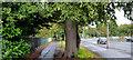 J3371 : The Annadale Embankment, Belfast (4) by Albert Bridge