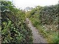 SJ9493 : Footpath over Knott Fold bridge by Gerald England