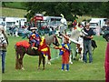 SJ1901 : Berriew Show - pony fancy dress by Penny Mayes