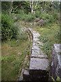 NU0801 : Old dam wall, Cragside by Stanley Howe