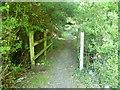 TQ1761 : Entering Chessington Wood across the Bonesgate Stream by Marathon