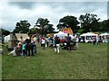 SJ1901 : Berriew Show - something for everyone by Penny Mayes