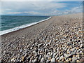SY6873 : Portland: along Chesil Beach from Chiswell by Chris Downer