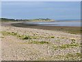 NY1565 : Solway shore east of Powfoot by Oliver Dixon