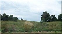 N4139 : Glacially moulded hills west of the N52 by Eric Jones