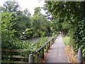TL7205 : Path & Pond at Great Baddow Recreation Ground by Adrian Cable