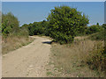 TQ0074 : Disused access road by Alan Hunt