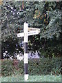 TM0981 : Roadsign on Bressingham Road by Adrian Cable