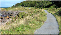 J4482 : The North Down coastal path, Helen's Bay by Albert Bridge