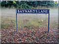 TM0981 : Baynard's Lane sign by Adrian Cable