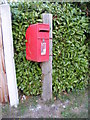TM0981 : Hall Lane Postbox by Adrian Cable