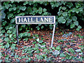 TM0980 : Hall Lane sign by Adrian Cable