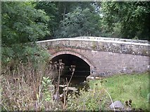 NY9393 : A former road bridge over Elsdon Burn by Stanley Howe