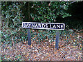 TM0980 : Baynard's Lane sign by Adrian Cable