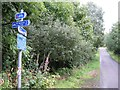 NH6348 : Cycle route signpost by Richard Dorrell