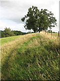 SP1726 : Footpath to Lower Swell by John Sutton