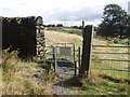 SK3097 : Path to Chase Lodge from Hannah Moor by Neil Theasby