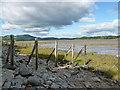 NX8150 : Remains of a groyne, Auchencairn Bay by Alan O'Dowd