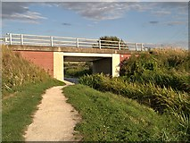 SK8634 : Grantham Canal, Bridge#64 (Casthorpe Bridge) by David Dixon