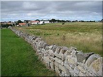 NU1341 : Drystone wall, Holy Island by Pauline E