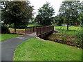 SM9801 : Wooden footbridge over a stream in Pembroke by Jaggery