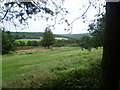 TQ4730 : View from Kings Standing Clump, Ashdown Forest by Marathon
