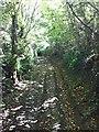 SS5728 : Cleave Lane by Hugh Craddock