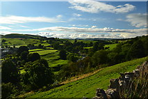 SE0361 : Glimpse of the River Wharfe, from Skuff Road by Peter Barr