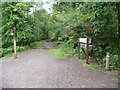 SO6113 : Footpath and cycleway junction at White Gates by Christine Johnstone