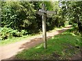 SO6113 : Signpost at the cycleway junction by Christine Johnstone