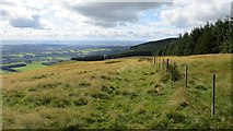 NN9701 : West ridge, Commonedge Hill by Richard Webb