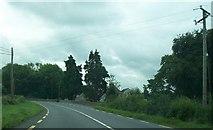 N0934 : Powerlines crossing the N62  at Kilbillaghan, Westmeath by Eric Jones