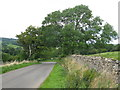 NY6316 : Sharp Bend on the Maulds Meaburn Road by G Laird