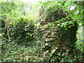 ST4892 : Part of Dinham Castle near Shirenewton, Monmouthshire by Jeremy Bolwell