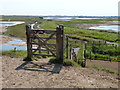 TF3639 : Gate and footpath leading to Frampton Marsh by Mat Fascione